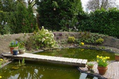 Tuin met vijver en brug