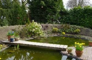 Tuinontwerp met vijver en duurzame brug